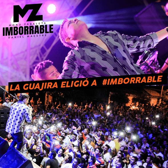 mborrable El Mono Zabaleta