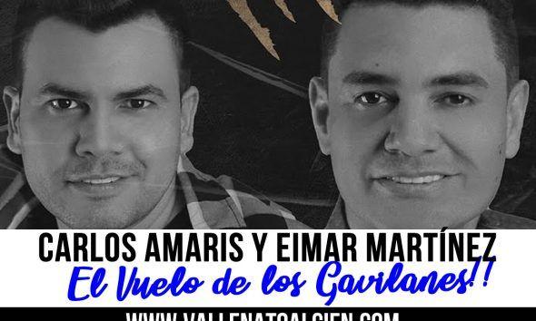El vuelo de los gavilanes Carlos Amaris y Eimar Martínez